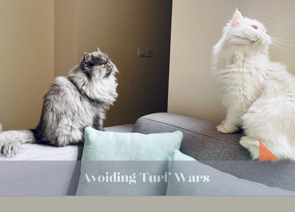 Avoiding Turf Wars